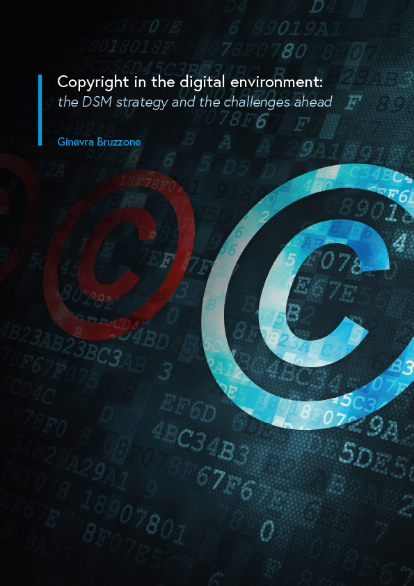 Copyright in the digital environment: the DSM strategy and the challenges ahead