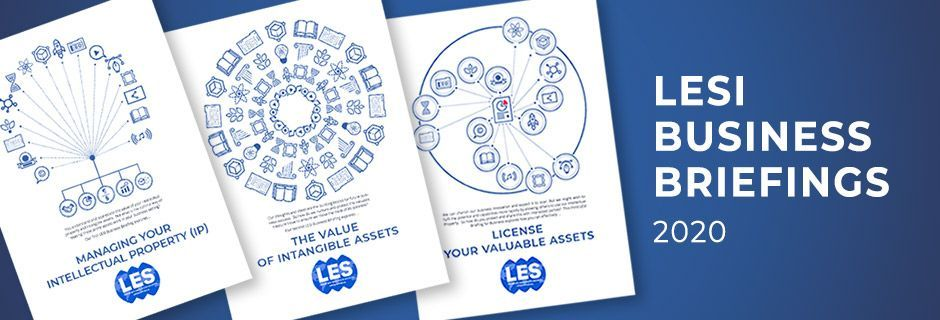 LESI business brief