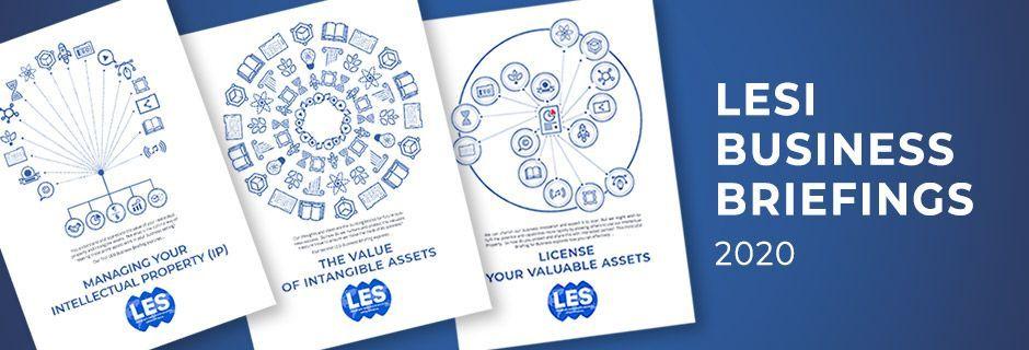 LESI business brief